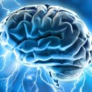 We may experience sexual pleasure by directly stimulating the brain in the future.