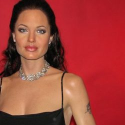 You could one day have a sexy robot copy of Angelina Jolie.