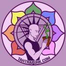 Tanta Punk logo