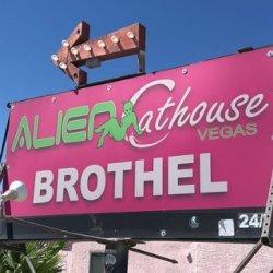 Alien Cathouse