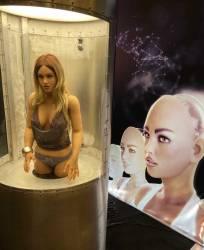 Robotic sex doll torso at RealDoll booth AVN 2020.