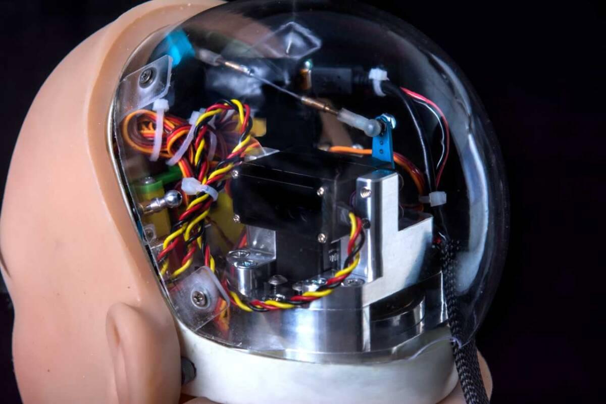 RealDoll's Harmony AI sex robot's interior of head.