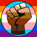 LGBT Gay Trans Black Lives Matter Flag