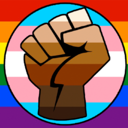 LGBT Gay Trans Black Lives Matter Flag