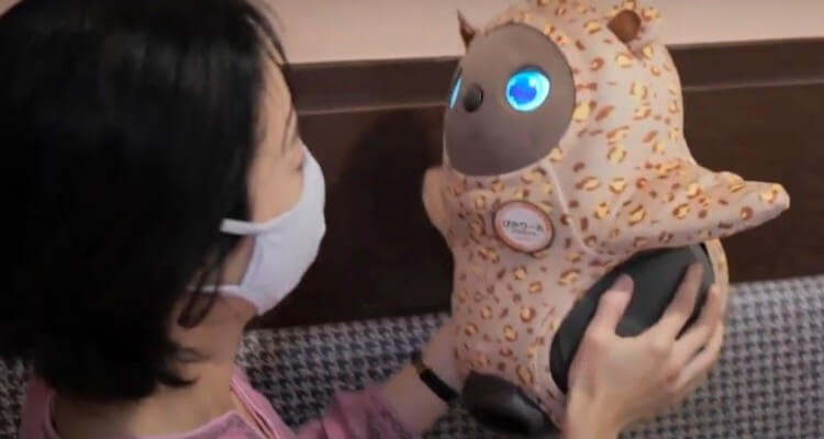 Image of a Female Customer Interacting with Cute Robots in LOVOT Cafe in Kawasaki, Japan