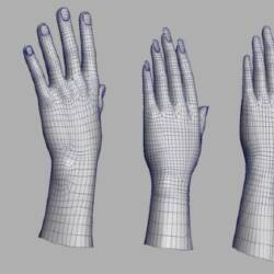 Image of 3D left hand Models