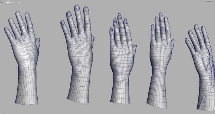 Image of 3D left hands