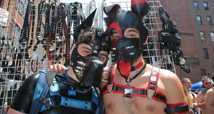 Pictures from gay/fetish/leather events of a pair of pups at the Folsom Street East Festival